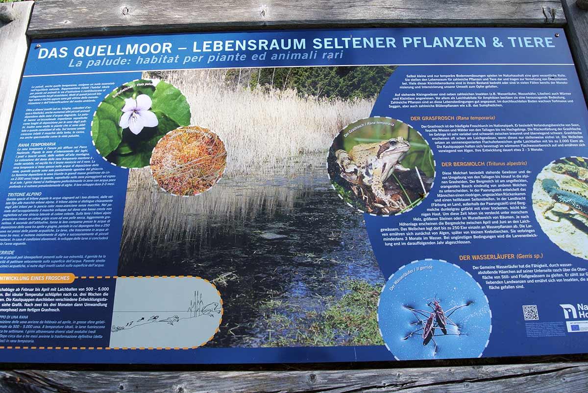 Schautafeln bieten Informationen über Flora und Fauna.