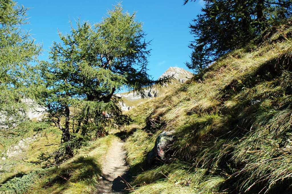 Wunderschönes Herbstwetter mit klarer Bergluft.