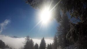 Winterwunderland.