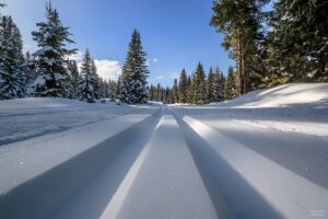 Unzählige Langlauf Loipen. Optimale Bedingungen, Schneesicherheit in ganz Osttirol.