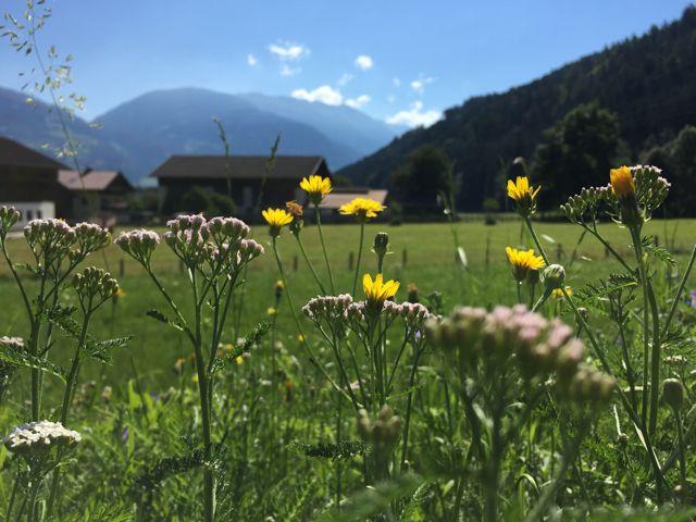 Mit dem Mountainbike durch Osttirol