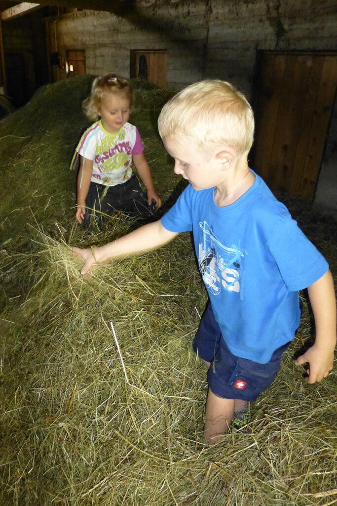 Urlaub am Bauernhof - Heuschlacht