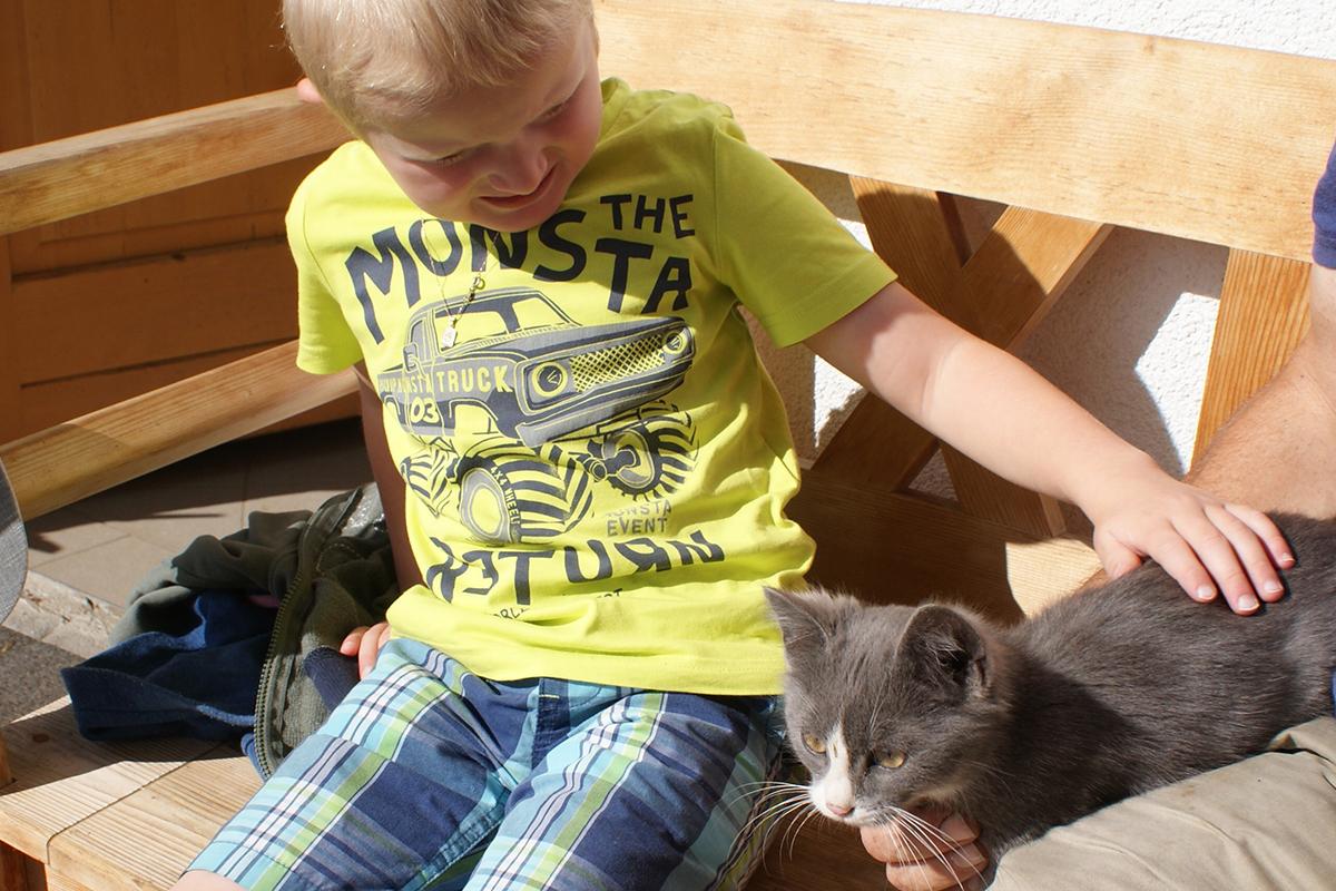Urlaub am Bauernhof - Kätzchen