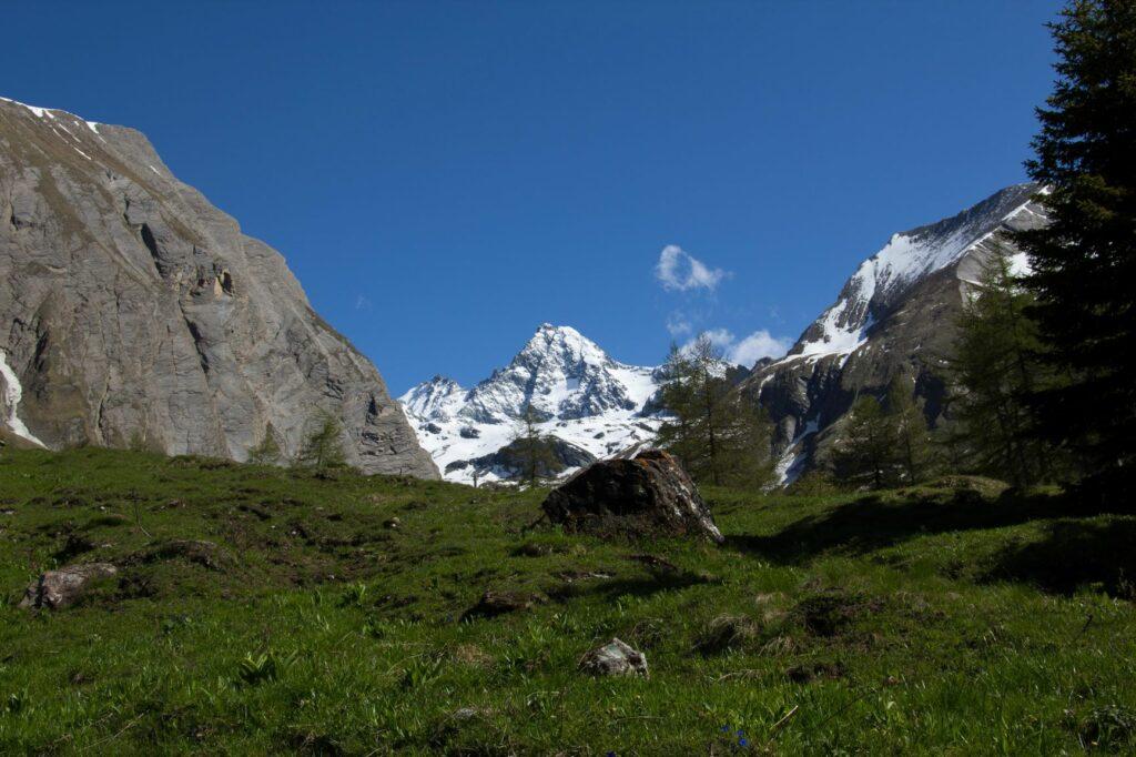 murmeltierblog-grossglockner-c-nationalparkhohetauern-simon-zeiner